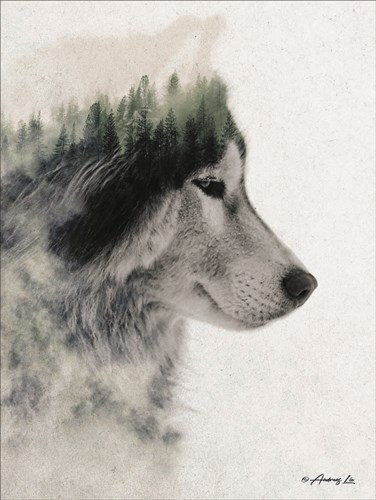 Wolf Stare art print by Andreas Lie for $41.25 CAD