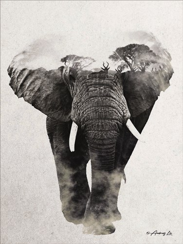 Elephant Walk art print by Andreas Lie for $41.25 CAD
