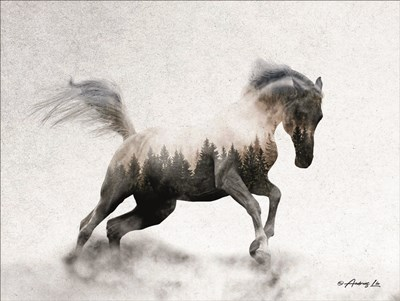 Running White Stallion art print by Andreas Lie for $41.25 CAD