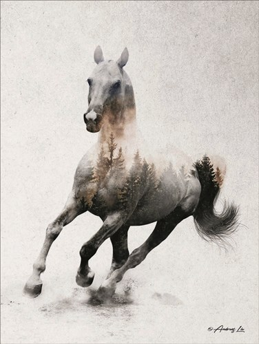 Galloping Stallion art print by Andreas Lie for $41.25 CAD