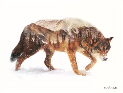 Arctic Wolf art print by Andreas Lie for $41.25 CAD