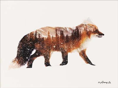 Arctic Red Fox art print by Andreas Lie for $41.25 CAD