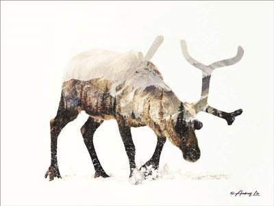 Arctic Reindeer art print by Andreas Lie for $41.25 CAD