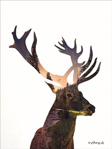 Deer in the Forest art print by Andreas Lie for $41.25 CAD