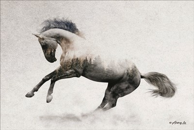 White Stallion art print by Andreas Lie for $43.75 CAD