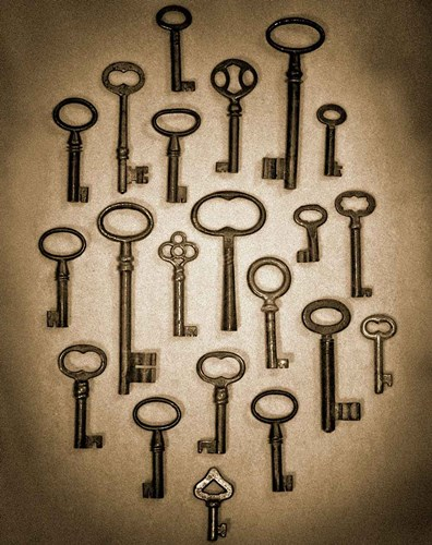 Key Elements II art print by Heather Ross for $40.00 CAD