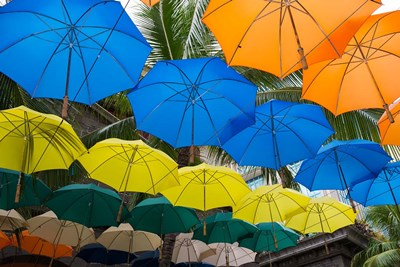 Mauritius, Port Louis, Caudan Waterfront Area With Colorful Umbrella Covering art print by Cindy Miller Hopkins / Danita Delimont for $60.00 CAD