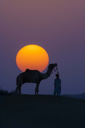 Camel and Person at Sunset, Thar Desert, Rajasthan, India art print by Art Wolfe / Danita Delimont for $42.50 CAD
