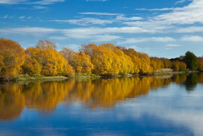 Autumn Colour And Clutha River At Kaitangata, South Island, New Zealand art print by David Wall / Danita Delimont for $42.50 CAD