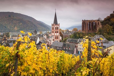 Germany, Rhineland-Pfalz, Bacharach, Elevated Town View In Autumn art print by Walter Bibikow for $42.50 CAD