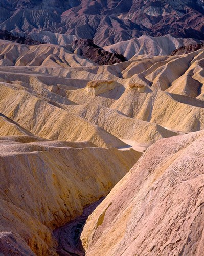 California, Death Valley NP, At Zabriskie Point art print by John Barger / DanitaDelimont for $70.00 CAD