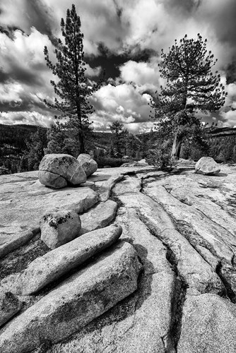 Granite Outcropping At Yosemite NP (BW) art print by Judith Zimmerman / DanitaDelimont for $51.25 CAD