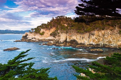 Rocky Cliff Along The Cypress Grove Trail art print by Russ Bishop / DanitaDelimont for $68.75 CAD