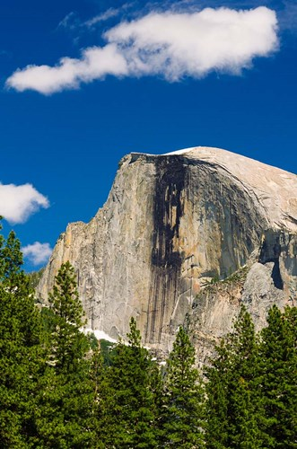 Half Dome, California art print by Russ Bishop / DanitaDelimont for $42.50 CAD