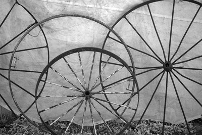 Old Metal Wagon Wheels (BW) art print by Connie Bransilver / Danita Delimont for $42.50 CAD