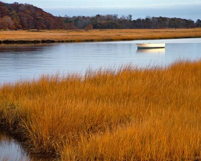 Boat Anchored In Mousam River, Maine art print by Jaynes Gallery / Danita Delimont for $73.75 CAD