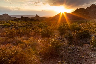 Sunset In Big Bend National Park art print by Larry Ditto / Danita Delimont for $42.50 CAD