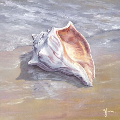 Whelk art print by Georgia Janisse for $16.25 CAD