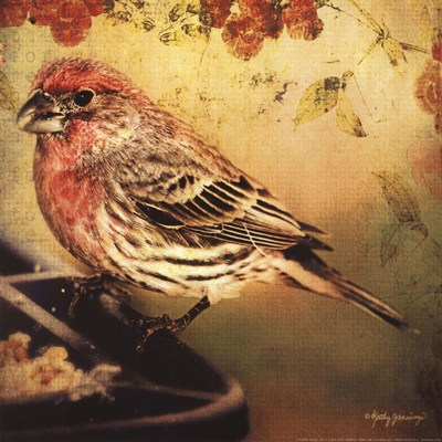 Frequent Visitor art print by Kathy Jennings for $16.25 CAD