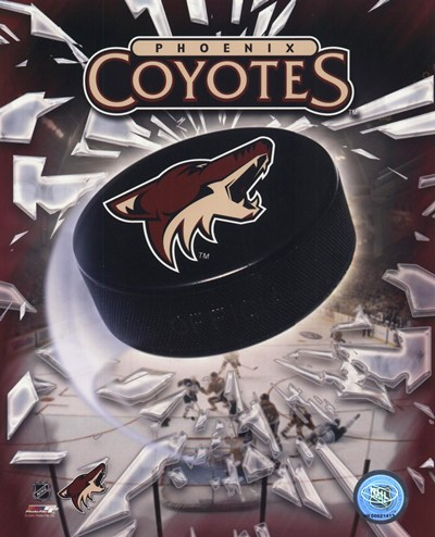 Phoenix Coyotes 2005 - Logo / Puck art print by Unknown for $21.25 CAD