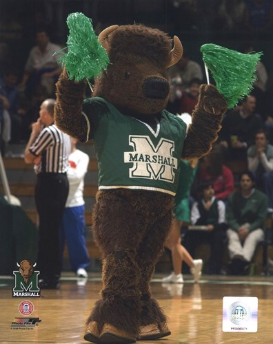 Marco - Marshall University Thundering Herd Mascot art print by Unknown for $21.25 CAD