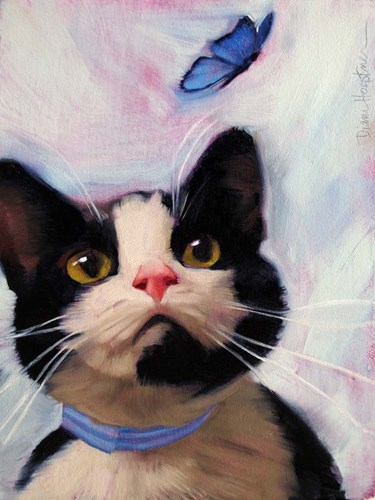 Cat and Butterfly art print by Diane Hoeptner for $41.25 CAD