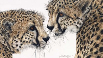 A Special Bond art print by Jan Henderson for $57.50 CAD