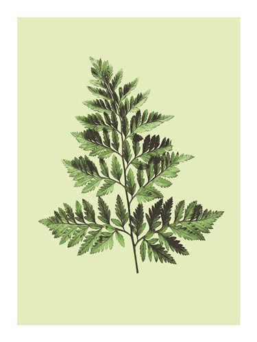 Bregne art print by Heaven on 3rd for $41.25 CAD