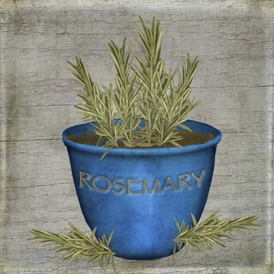 Herb Rosemary art print by Beth Albert for $46.25 CAD