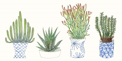 Four Succulents I art print by Melissa Wang for $50.00 CAD
