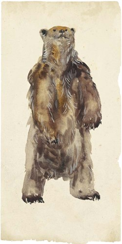 Brown Bear Stare I art print by Melissa Wang for $105.00 CAD