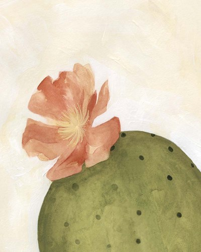 Arid Bloom I art print by Emma Scarvey for $53.75 CAD