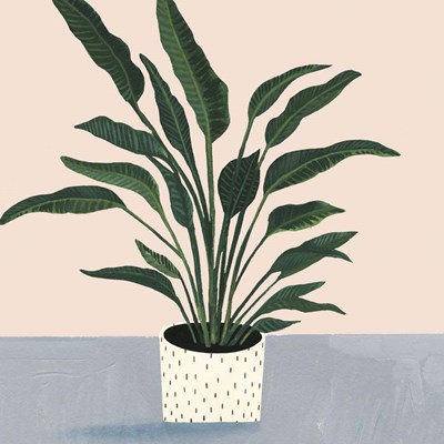 Houseplant IV art print by Victoria Borges for $112.50 CAD