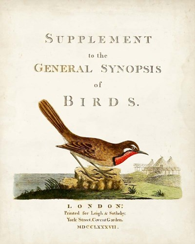 General Synopsis of Birds art print by John Latham for $53.75 CAD