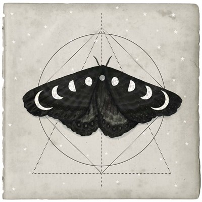 Midnight Moth I art print by Victoria Borges for $53.75 CAD