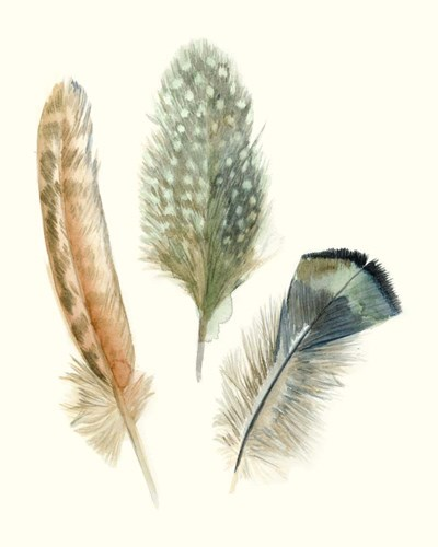 Watercolor Feathers I art print by Megan Meagher for $53.75 CAD
