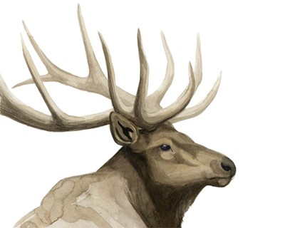 Call of the Elk I art print by Grace Popp for $87.50 CAD