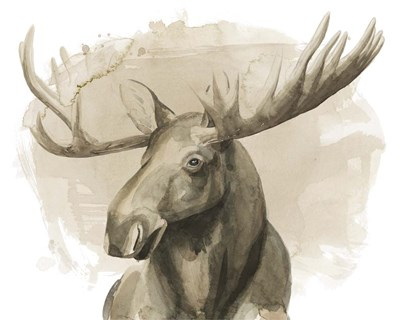 Bull Moose II art print by Grace Popp for $87.50 CAD