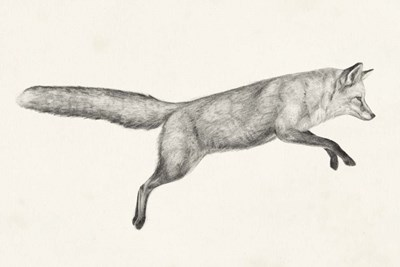Flying Fox I art print by Victoria Borges for $42.50 CAD