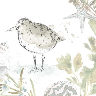 Seaside Sandpipers IV art print by June Erica Vess for $68.75 CAD