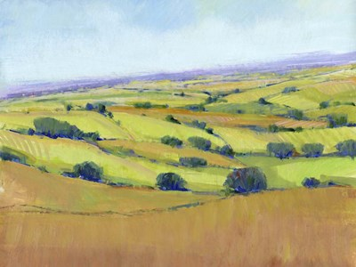 Patchwork Vista I art print by Timothy O'Toole for $63.75 CAD