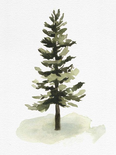 Watercolor Pine II art print by Emma Caroline for $38.75 CAD