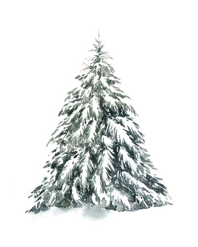 Blue Spruce I art print by Grace Popp for $53.75 CAD