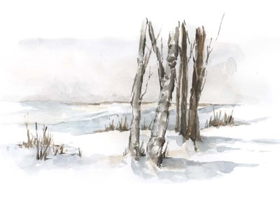 First Snowfall I art print by Ethan Harper for $63.75 CAD