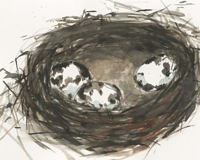 Nesting Eggs II art print by Sam Dixon for $53.75 CAD