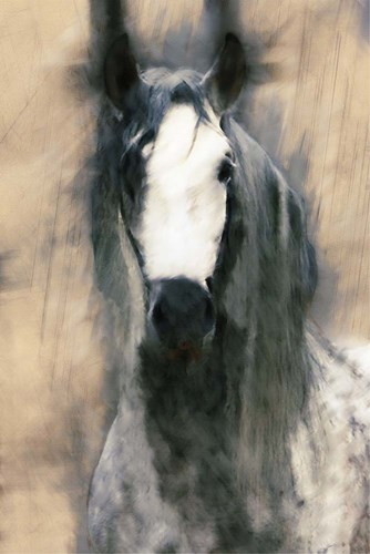 Blended Horse II art print by Kim Curinga for $97.50 CAD