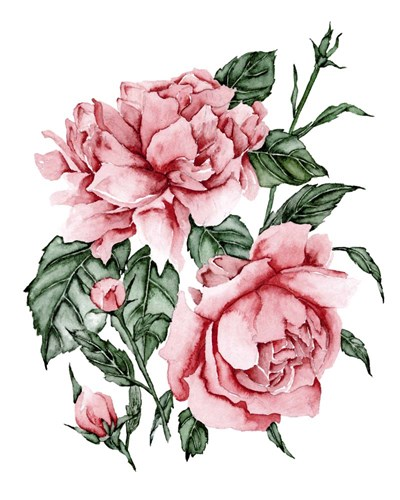 Roses are Red II art print by Melissa Wang for $53.75 CAD