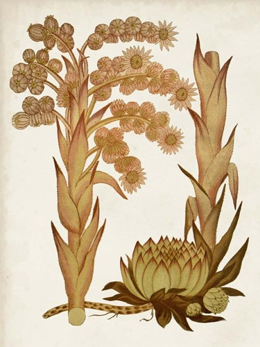 Muted Botanicals II art print by Curtis for $63.75 CAD