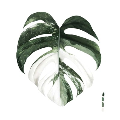 Variegated Monstera I art print by Grace Popp for $53.75 CAD