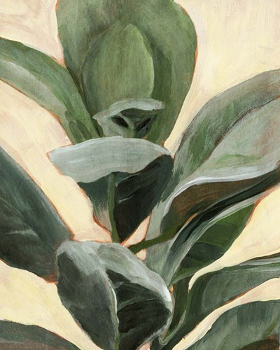 Plant Study II art print by Annie Warren for $53.75 CAD